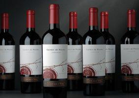 チリ食品、ワイン観光展示商談会が開催